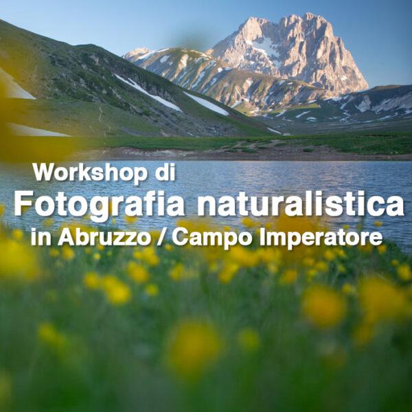 20200620 WS NaturaAbruzzo_1x1